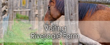 riverdale-farm-banner