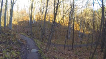 Wide variety of trails at Albion Hills.