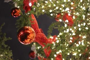 to-christmas-market-6