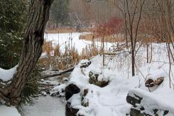 Beautiful winter scene at Terra Cotta CA.