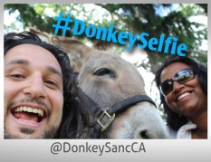 The Donkey Sanctuary of Canada in Guelph - Lets Discover ON Travel Blog - DonkeySelfie