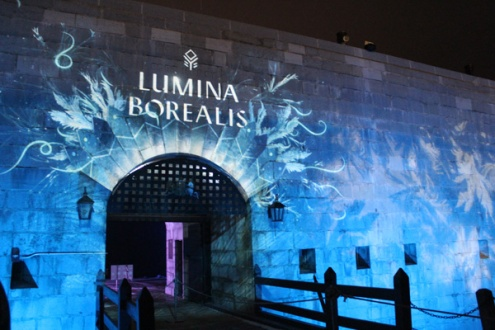 Lumina Borealis at Fort Henry