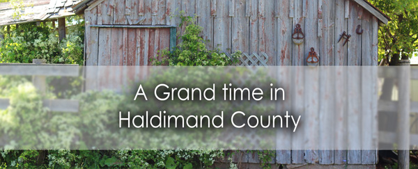 haldimand-banner