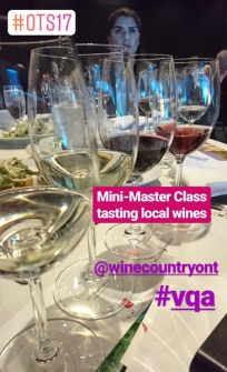 TIAO Ontario Tourism Summit - VQA master wine tasting