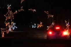 Bingemans-gift-of-lights---Lets-Discover-ON--5