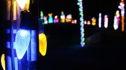 Bingemans-gift-of-lights---Lets-Discover-ON--9