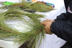 ON-Nature-Scots-Pine-Wreath---making-christmas-wreath---Lets-Discover-ON