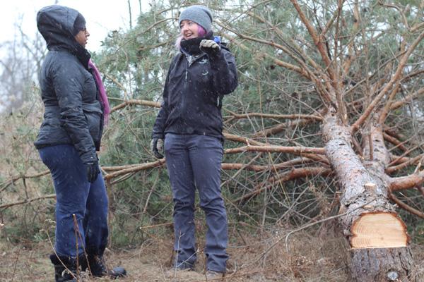 ON-Nature-Scots-Pine-Wreath---Petula-Fera-and-Jessica-Ferguson---Lets-Discover-ON