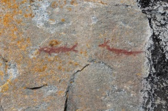 Sault-Ste-Marie-Agawa-Rock-Pictographs-Lets-Discover-ON-2