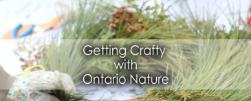 Getting-crafty-with-Ontario-Nature-Lets Discover ON Travel Blog