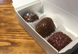 Lets-Discover-ON---stratford-chocolate-trail---chocolate-barrs-truffles